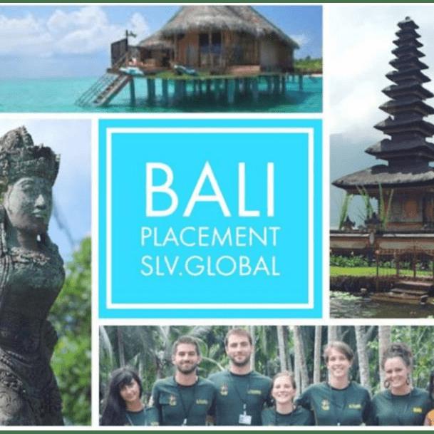 Bali 2019 - Laila Sangha cause logo
