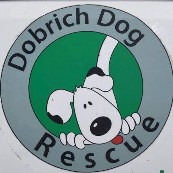 Dobrich Dog Rescue Elhovo