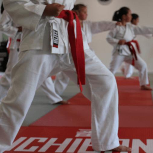 Ichiban Karate Squad