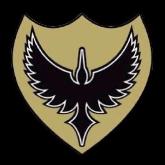 Solent Thrashers American Football Club