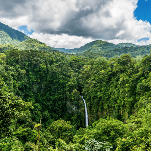 Costa Rica 2019 - Maya Nell
