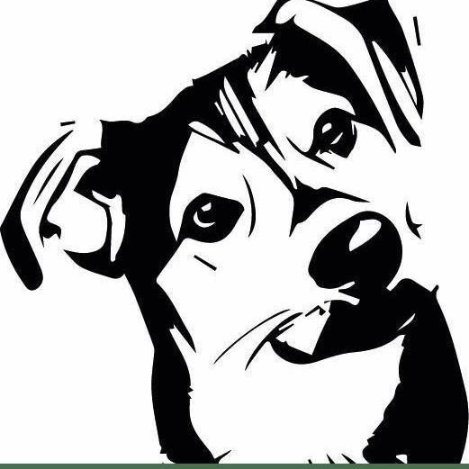 Fetcher Dog