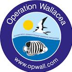 Operation Wallacea Indonesia 2022 - Thiana Messaoud