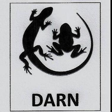 Dorset Amphibian and Reptile Network (DARN)