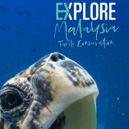 Malaysia 2019 - Georgina Withers