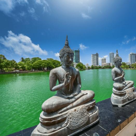 SLV Global Sri Lanka 2019 - Fay Hillyer