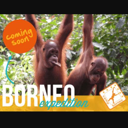 Camps International Borneo 2018 - Ofure Toweh