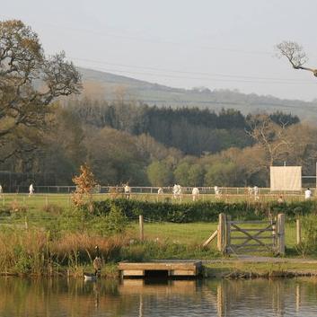 Ivybridge Cricket Club