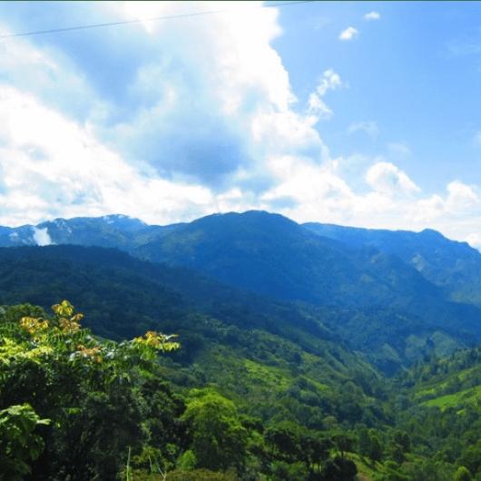 Operation Wallacea Honduras 2018 - Jodie Threadingham-Wasley