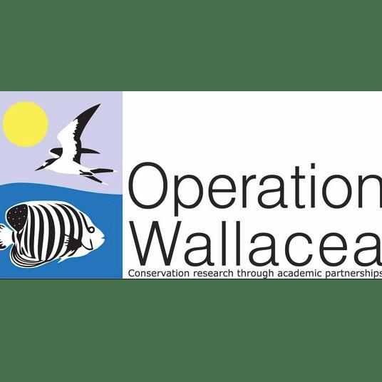 Operation Wallacea Honduras 2019 - Alice Thwaites-Rice