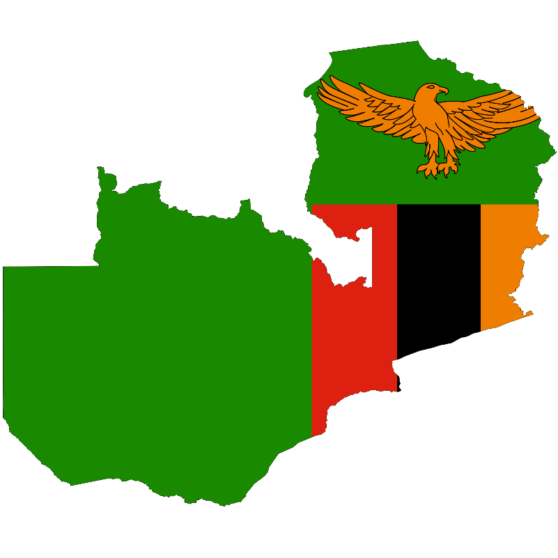 Elective Physiotherapy Placement Zambia 2019 - Emily Lotter