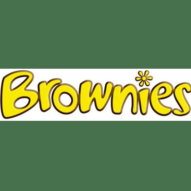 11th Letchworth Brownies