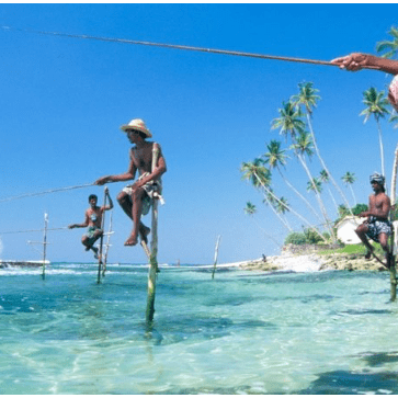 SLV Global Sri Lanka 2020 - Frances Greenway