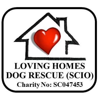 Loving Homes Dog Rescue