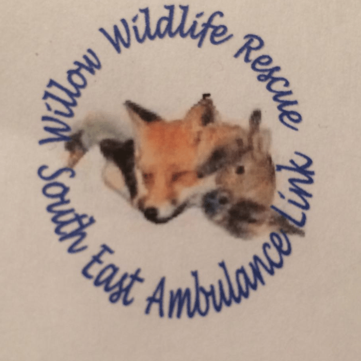 Willow Wildlife Rescue