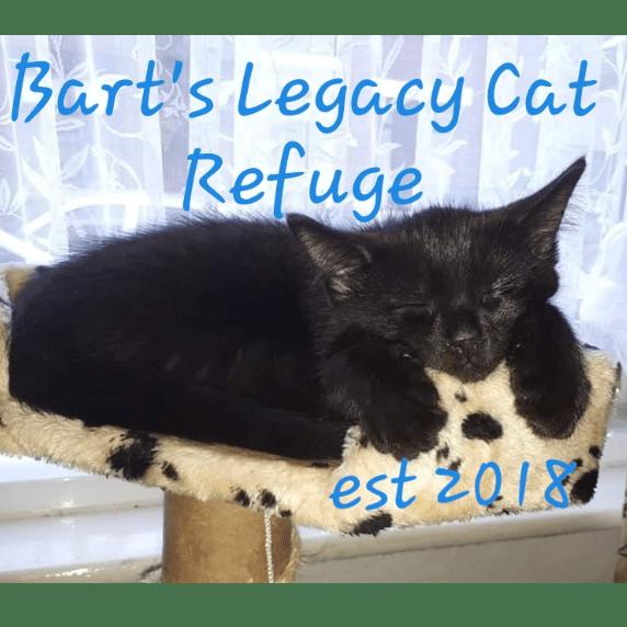 Bart's Legacy Cat Refuge