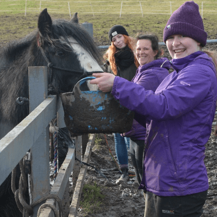Helping Hooves Derbyshire CIC