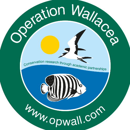 Operation Wallacea Mexico 2017 - Laura Harris