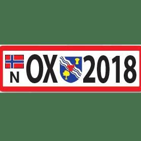 Oxfordshire Scouts Bosnia 2020