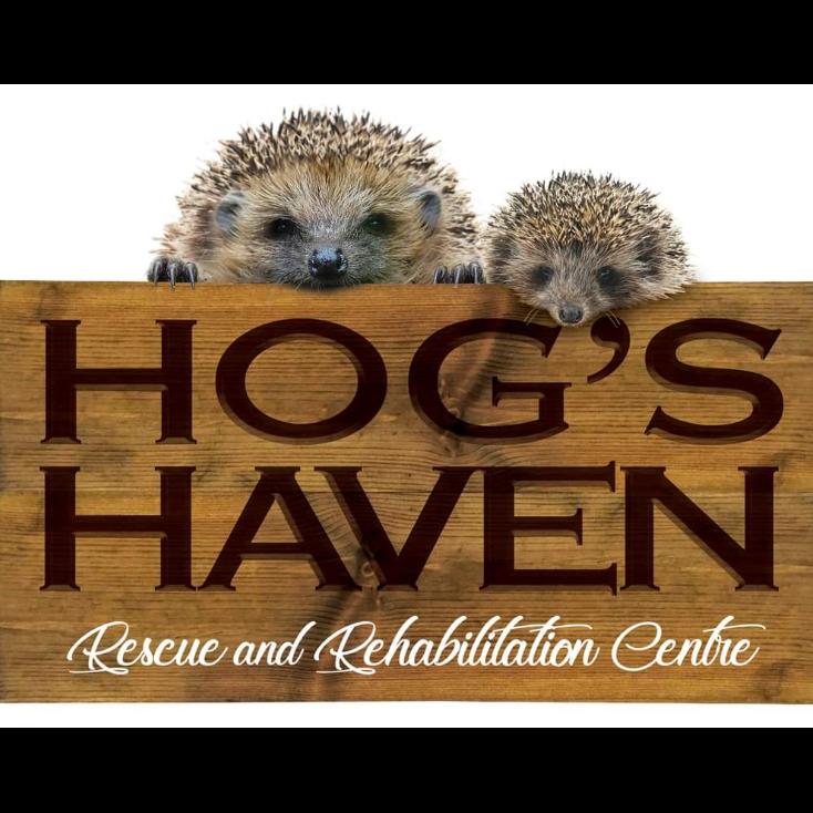 Hog's Haven