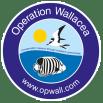 Operation Wallacea Honduras 2020 - Jade Cutts