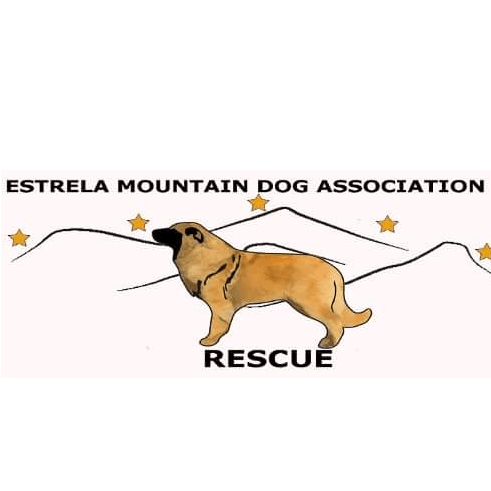 Estrela Mountain Dog Association Rescue