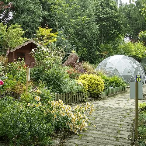 Whickham Hermitage Community Garden