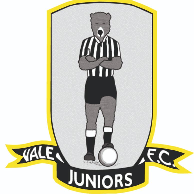 Vale Juniors FC