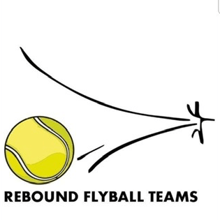Rebound Flyball Teams