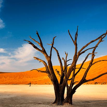 World Challenge Namibia 2020 - Oscar Harvey