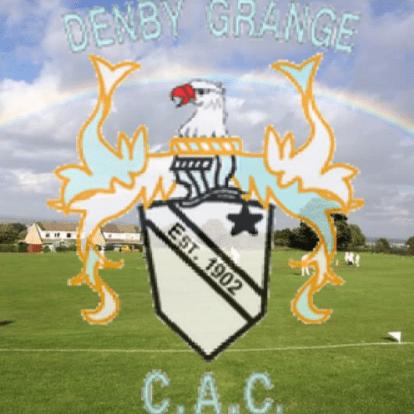 Denby Grange Cricket Club
