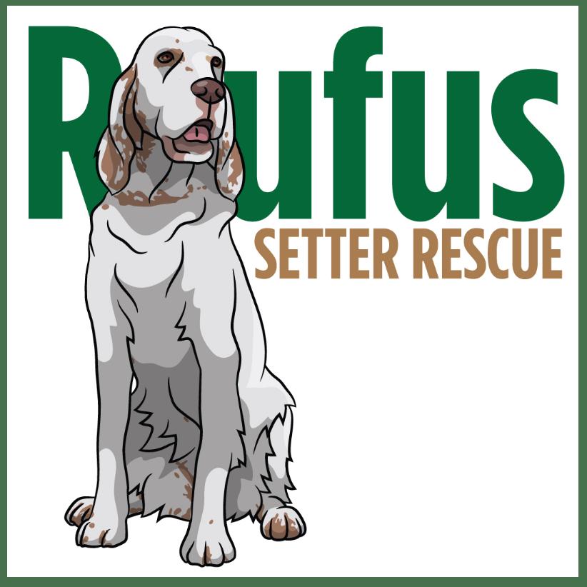 Rufus Setter Rescue