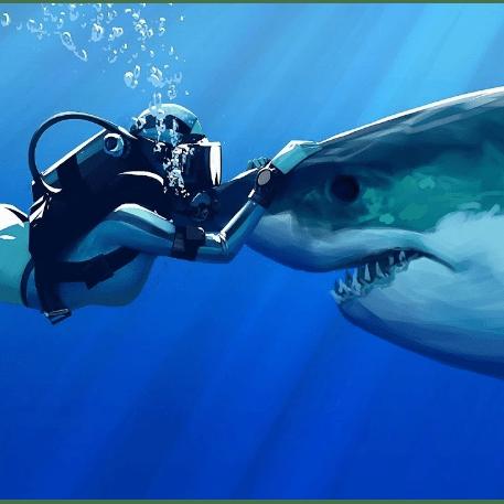 White Shark Africa 2018 - Emily Eaton
