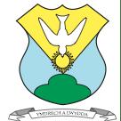 Ysgol Gymraeg Dewi Sant - PTA Llanelli Dyfed