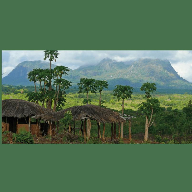 Swaziland 2020 - Alistair Aufiero