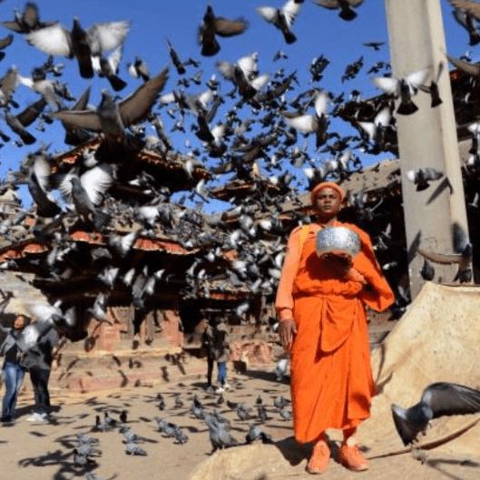 World Challenge Nepal 2019 - Nikola Borowksa