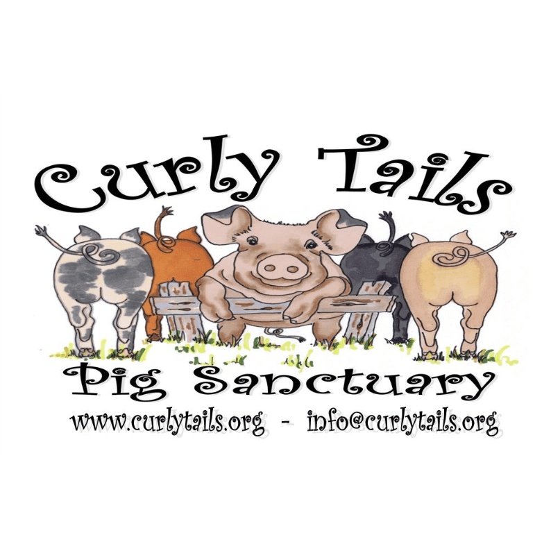 Curly Tails
