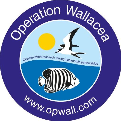Operation Wallacea Honduras - Emma Moulton