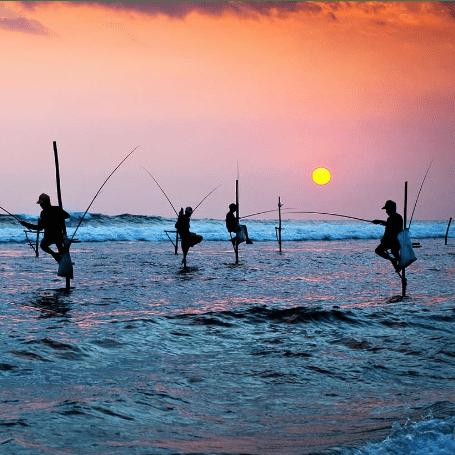 Sri Lanka 2019 - Iqrah Kawthar