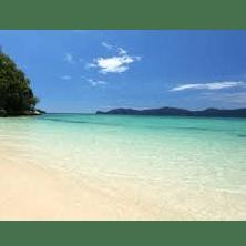 World challenge Borneo 2019 - Abbie McDonald