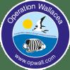Operation Wallacea Indonesia 2019 - Hayley Brand