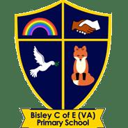 Bisley C of E Primary School - Bisley