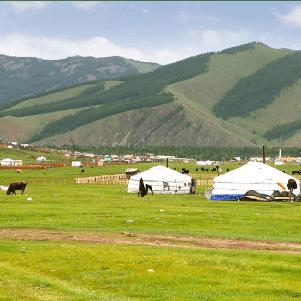 World Challenge Mongolia 2020 - Millie Harpur