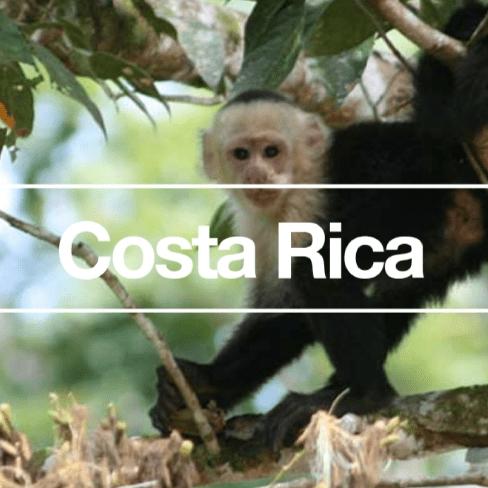 Costa Rica 2020 - Jaden Kerlen