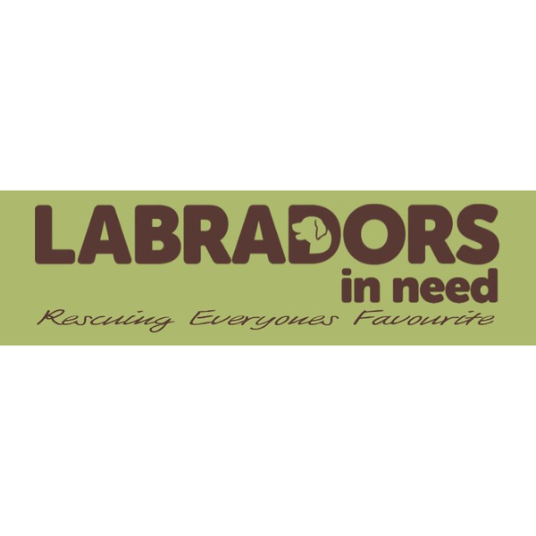 Labradors In Need