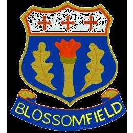 Blossomfield Cricket Club