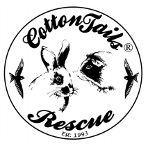 CottonTails Rabbit and Guinea Pig Rescue