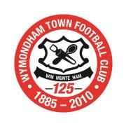 Wymondham Town Football Club