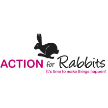 Action for Rabbits