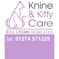 K9 and Kitty Care